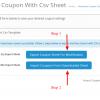 Bulk Coupon Import ( Automatic & Csv Sheet )