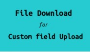 File Download For Custom Field Upload